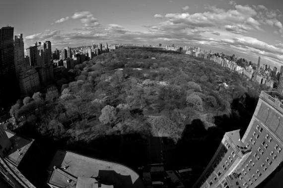 Central Park 3. 2012