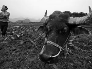 China.22.2007