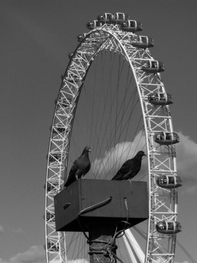 Londres 17