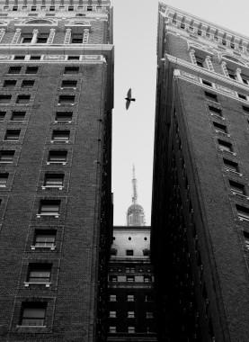 NYC 7. 2013