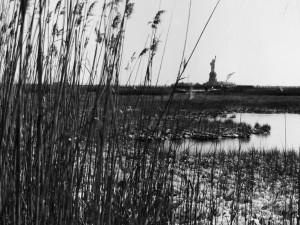 Statue.of.Liberty-1991