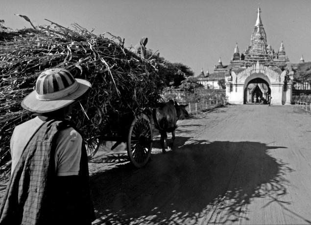 Birmania 19