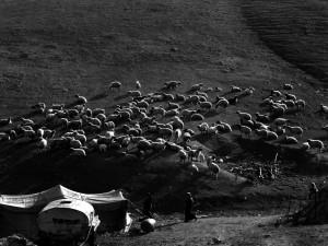 Israel.04-1993