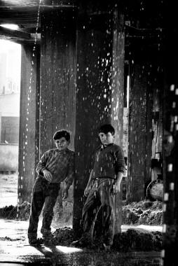 Arenera . 1965