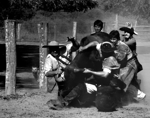 Gauchos. Formosa. 1996